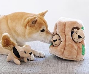 Outward Hound Interactive Puzzle Toy – Plush Hide and Seek Activity for Dogs review