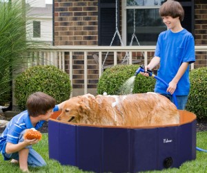 Fuloon PVC Pet Swimming Pool review