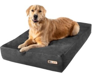 Big Barker Dog Bed, Sleek Edition review