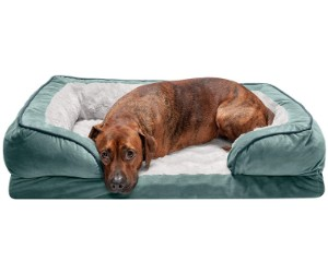 Furhaven Classic Style Dog Sofa Bed review
