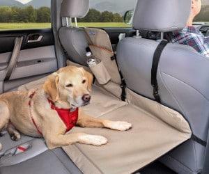Kurgo Dog Backseat Bridge review