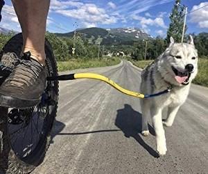 Bike Tow Leash - Dog Bike Leash review