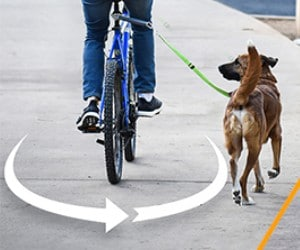 MALABI V2.0 EasyRide Dog Bike Leash review