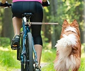 WalkyDog Plus Bike Leash