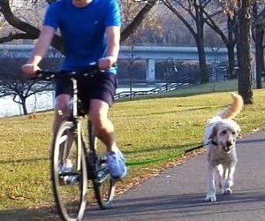 Woof Dog Bicycle Exercise Leash review