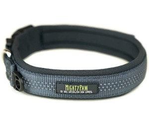 Mighty Paw Sport Collar review