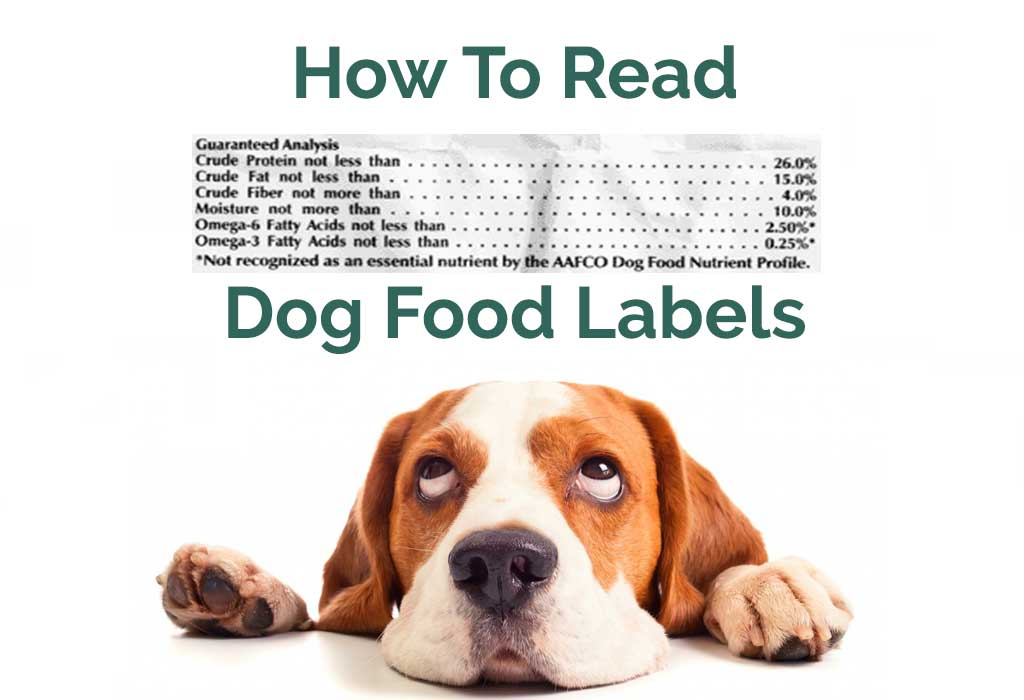 Things You Need To Know About Dog Food Nutrition Labels