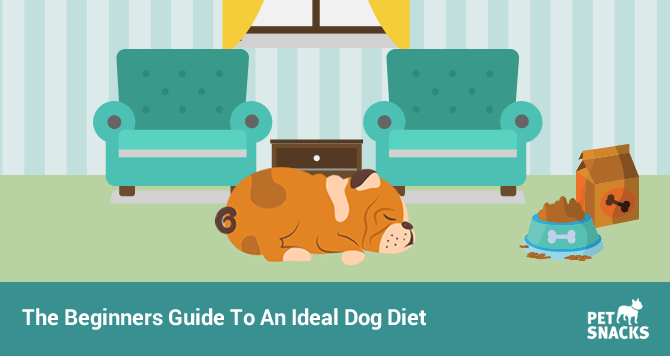 preview-full-the-beginners-guide-to-an-ideal-dog-diet