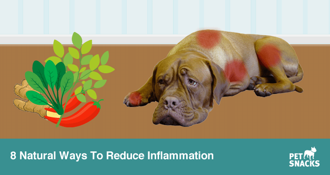 preview-full-8 Natural Ways To Reduce Inflammation.fw
