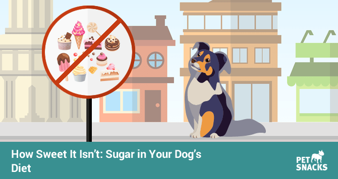 preview-full-How Sweet It Isnt Sugar in Your Dogs Diet