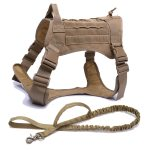 Brown Harness and Leash