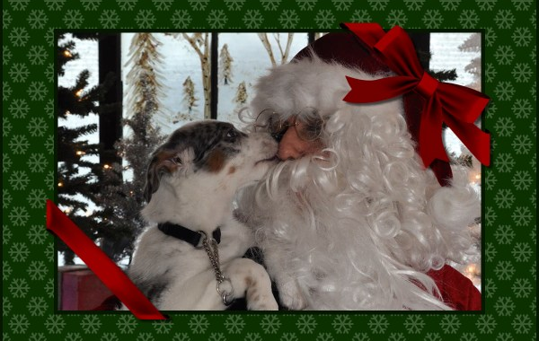 santa_with_pet