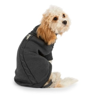 jumper for dogs