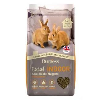 indoor rabbit food