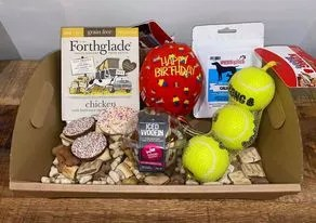 birthday box for dogs