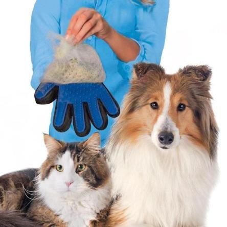 Gant pour poils de chat et chien