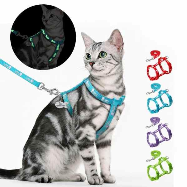 harnais pour chat Fluorescent