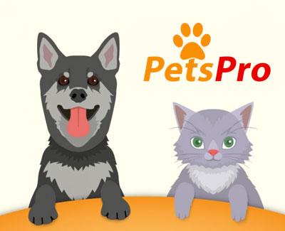 animalerie en ligne chien et chat