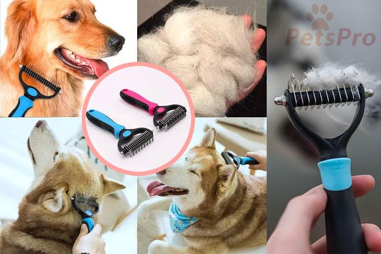 brosse de toilettage pour chien et chat