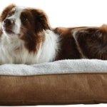 Animal-Planet-Sherpa-Pet-Bed-Large-0