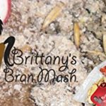 Horse-Treats-Brittanys-Bran-Mash-for-Horses-0