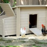 New-Age-Pet-Fontana-Chicken-Barn-0-1