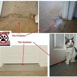 CarPET-Scratch-Stopper-Stop-Cats-From-Scratching-Carpet-at-Doorway-0-1