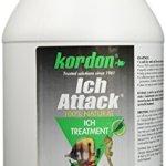 KORDON-39461-Ich-Attack-for-Aquarium-1-Gallon-0