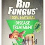 KORDON-39844-Rid-Fungus-for-Aquarium-4-Ounce-0