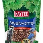 Kaytee-Mealworms-0