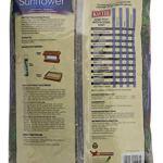 Kaytee-Wild-Bird-Food-Black-Oil-Sunflower-5-Lb-0-2