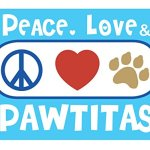 Pawtitas-Pet-Multicolor-Cat-Collar-Safety-Buckle-Removable-Bell-Cat-Collar-Kitten-Collar-Cat-Collar-0-2
