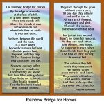 Rainbow-Bridge-for-Horses-Sympathy-Picture-Frame-Gift-and-Memorial-with-optional-custom-photo-editing-0-0