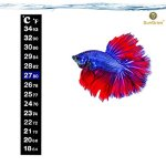 SunGrow-Betta-Sticker-Thermometer-Ensure-Optimum-Comfort-Around-78-Degrees-Accurately-Measures-Temperature-Large-Font-for-Quick-Reading-Keep-Fish-Healthy-1-Minute-to-Set-up-0