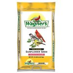 Wagners-Oil-Sunflower-0