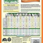 Wagners-Southwestern-Regional-Birdseed-Mix-0-0