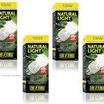 4-Pack-Exo-Terra-Repti-Glo-20-Full-Spectrum-Terrarium-Lamp-Compact-Fluorescent-13-Watt-0