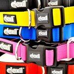 Dexil-Elite-Range-Luxury-Neoprene-Padded-Extra-Strong-Adjustable-S-M-L-XL-XXL-Pet-Dog-Collars-0