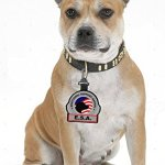 Emotional-Support-Animal-ESA-Clip-on-Identification-Hanging-Patch-Tag–Clips-onto-a-Service-Dog-Vest-Harness-Collar-Leash-or-Carrier-0-0