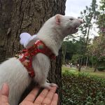 Ferret-Harness-and-Leash-Adjustable-Sakura-Cotton-Cloth-Ferret-Walking-Vest-Soft-and-Breathable-Ferret-Lead-Leash-with-Angel-Wings-and-Safe-Bell-0