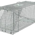 Live-Animal-Trap-Racoon-Skunk-Rabbit-Dog-Cat-Steel-Cage-Collapsible-Humane-Large-0