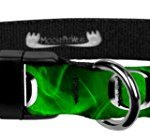 Moose-Pet-Wear-Dog-Collar–University-Oregon-Ducks-Adjustable-Pet-Collars-Made-in-The-USA–1-inch-Wide-0
