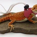 Ogle-Lizard-Leash-Limited-Edition-Pink-0-0