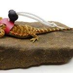 Ogle-Lizard-Leash-Limited-Edition-Pink-0-1
