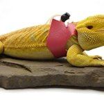 Ogle-Lizard-Leash-Limited-Edition-Pink-0