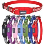 Red-Dingo-Reflective-Martingale-Dog-Collar-Medium-0
