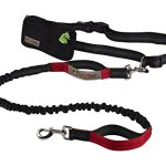 Retractable-Hands-Free-Dog-Leash-with-Dual-Bungees-for-up-to-150-lbs-Large-Dogs-0-2