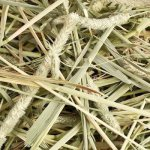 Small-Pet-Select-12oz-1st-Cutting-Timothy-Hay-0