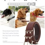 Soft-Leather-Padded-Custom-Dog-Collar-and-Leash-Set-with-Personalized-Engraved-NameplateFit-Small-Medium-Large-Dogs-0-2