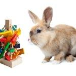 The-Tree-Pet-Rabbit-Toy-0